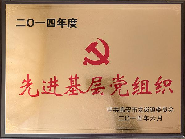 2014年度先进基层党组织-华龙摩擦