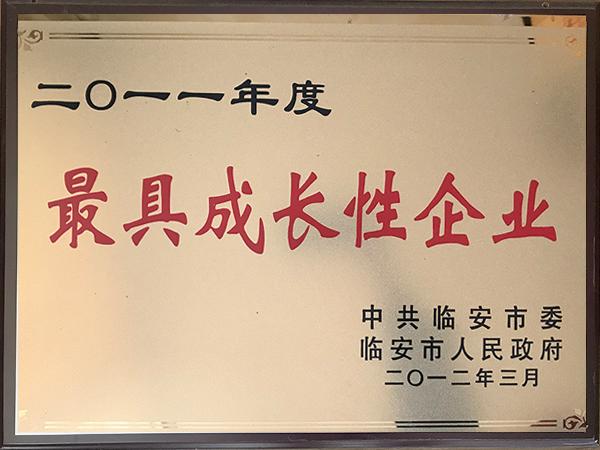 2011年度最具成长性企业-华龙摩擦