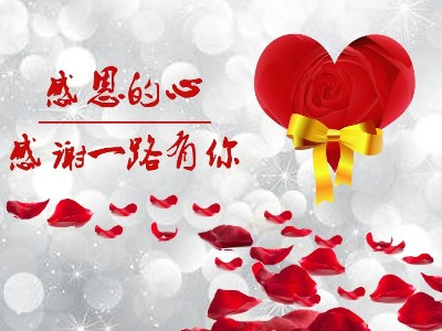 杭州临安华龙摩擦片|感恩节,心怀感恩,砥砺前行!